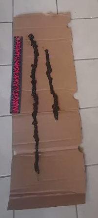 Mucoid Ropes